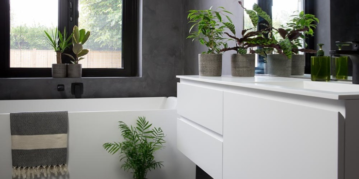 Groups of plants on bathroom cabinet and other plants on bathroom floor