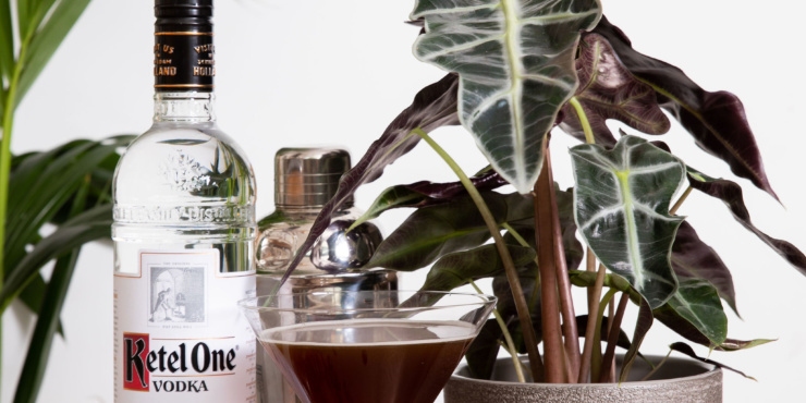 Alocasia Polly Houseplant in a grey pot next to a bottle of ketel one vodka and an espresso martini