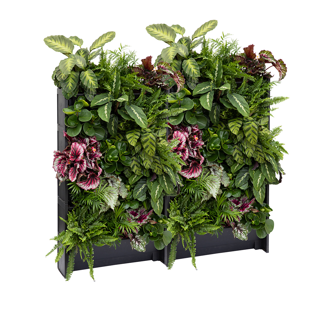 PlantBox living wall set of 10 troughs with houseplants