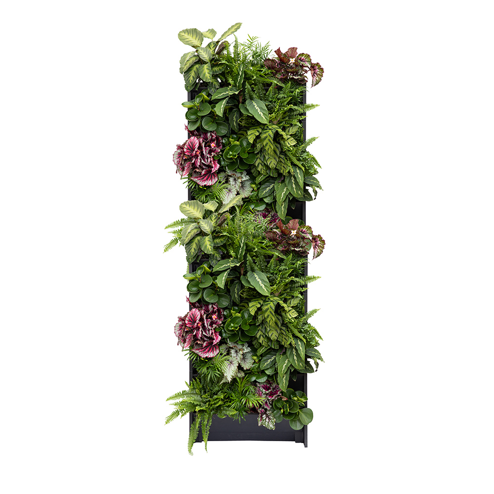 PlantBox living wall set of 5 troughs with houseplants