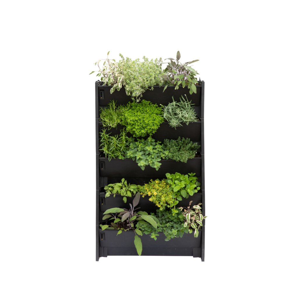 PlantBox living wall set of 5 troughs with herb