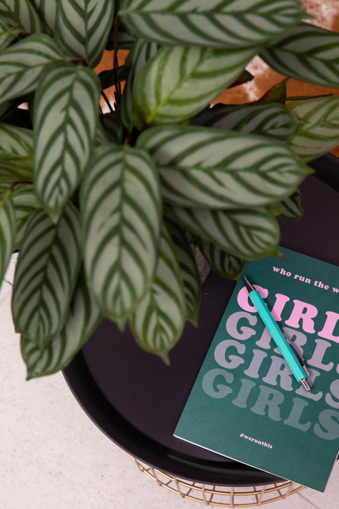 calathea plant leaves next to a book and pen